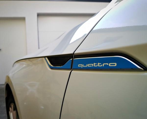 Dekor Kotflügel Blau mit Logo